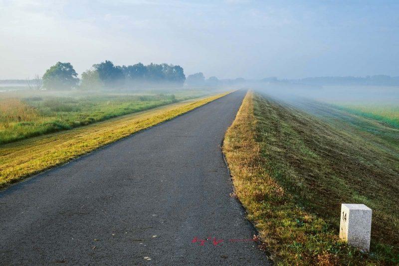 Wenn morgendliche Nebelschwaden aus den Wiesen aufsteigen, hat man die Straße ganz für sich allein.