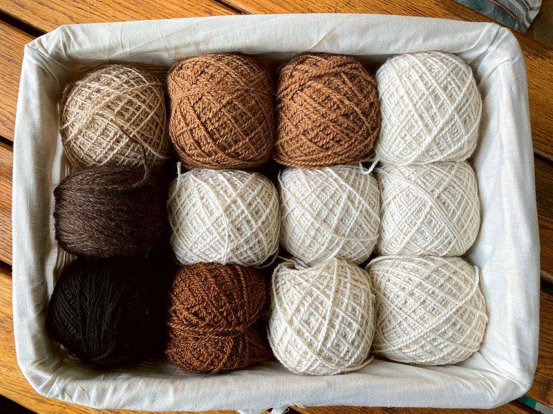 Alpakawolle zählt zu den edelsten Wollsorten.