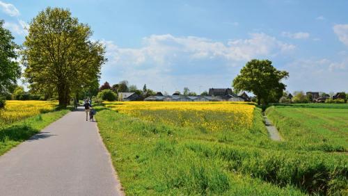 Marschbahndamm: In den 1920er-Jahren fuhr hier eine Kleinbahn, heute ist er ein beliebter Radweg.