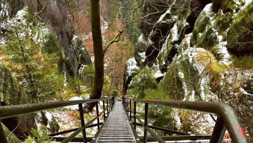 Die Heilige Stiege im Elbsandsteingebirge führt über 903 Stufen auf den Winterberg.