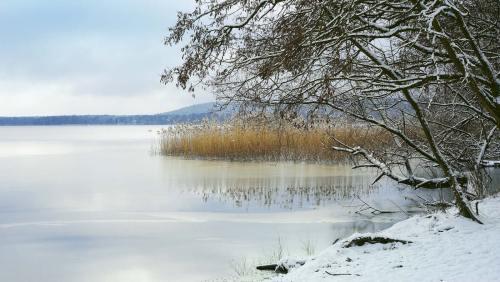 Stille ist am See eingekehrt: Die Natur liegt im Winterschlaf.