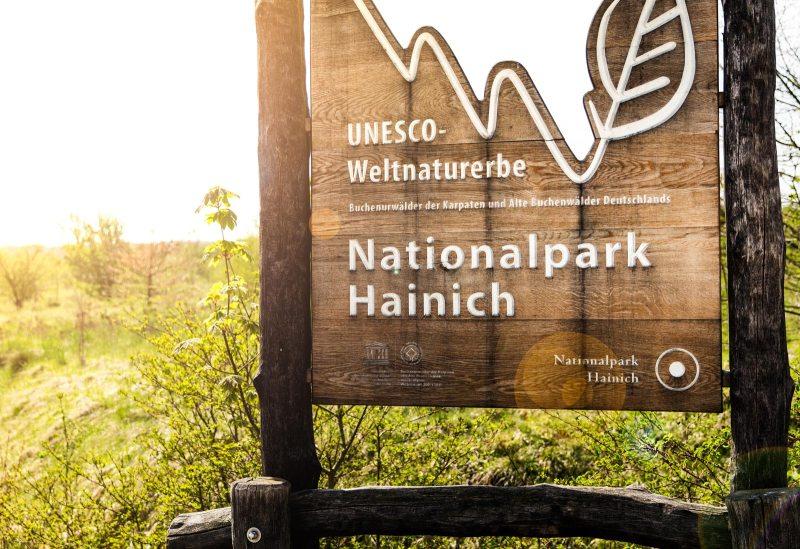 Betteleichenweg Nationalpar Hainich