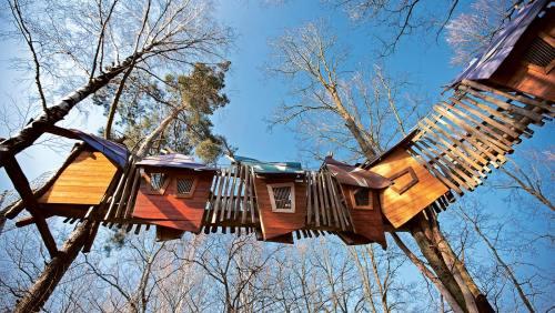 Wie überdimensionale Vogelhäuschen hängen diese Holzbauten im Erlebnispark in den Bäumen.