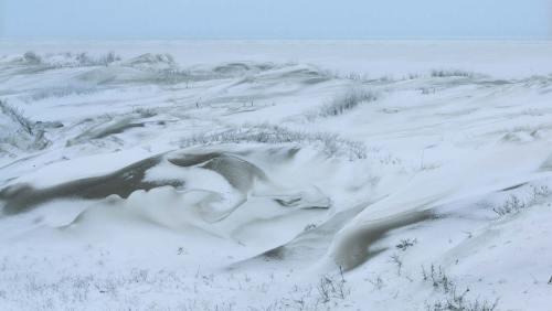 Laune der Natur: Im Winter deckt der Schnee auch die Dünen mit seinem weißen Mantel zu.