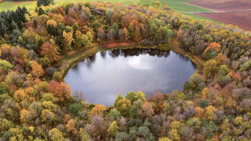Vulkanisches Überbleibsel: 30m tief ist der vor rund 80000 Jahren entstandene Windsborn Kratersee.