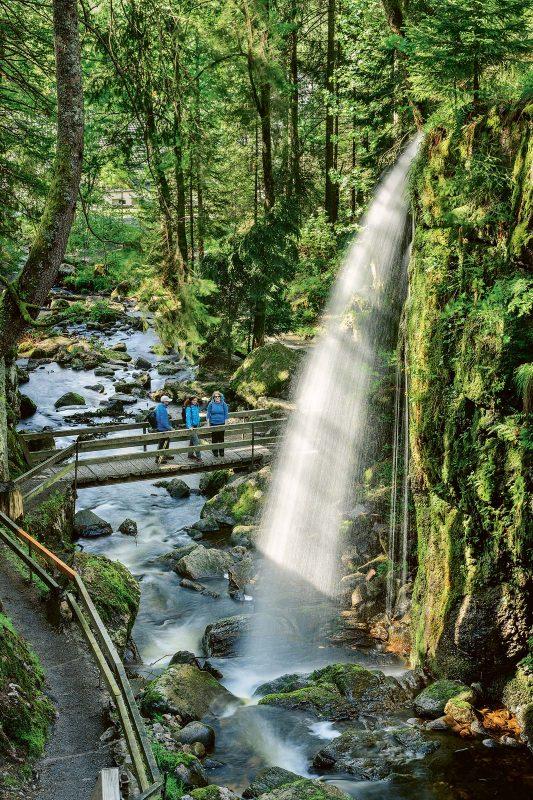 Wasserfälle begegnen dem Wanderer am Albsteig auf Schritt und Tritt.