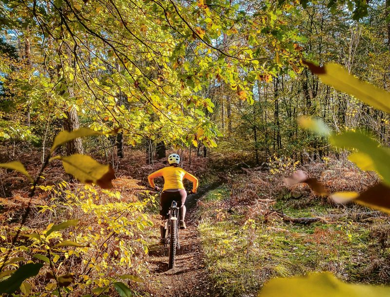 Über Stock und Stein: Der 2020 eröffnete »Haard on Tour«-Rundkurs bringt Mountainbiker zum Schwärmen.