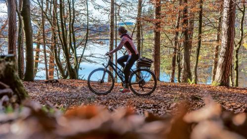 Die Seenplatte mit dem Rad zu erkunden ist im Herbst besonders stimmungsvoll.