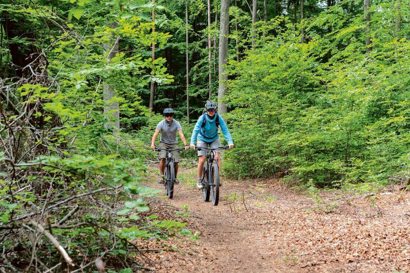 Die Heumödern-Trails bieten Mountainbike-Spaß in sechs Leveln.
