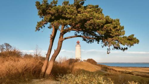 Der Leuchtturm Dornbusch wacht über das Seebad Hiddensee.