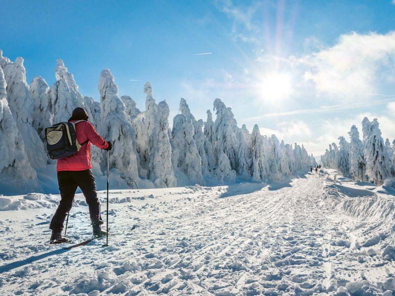 Ein Wintertag auf der Loipe am Fichtelberg, wie man ihn sich schöner nicht wünschen könnte.