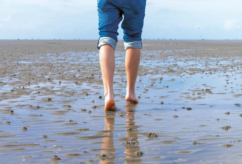 Ein unvergessliches Erlebnis ist die 10km lange Wattwanderung von Cuxhaven zur Insel Neuwerk.