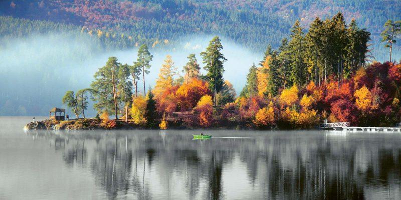 Die Baumwelt am Schluchsee hat ihr buntes Herbstkleid angelegt.