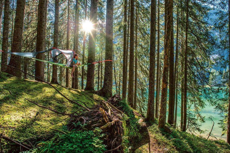 Ein Baumzelt: eine tolle Art, es sich im Wald bequem zu machen und gleichzeitig die Natur zu genießen