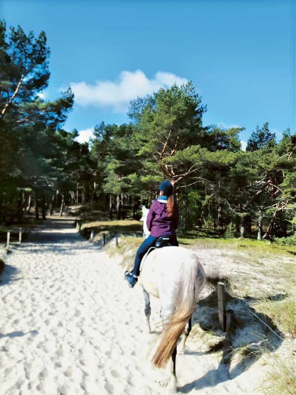 Der Ostseestrand: ein beliebtes Revier für  passionierte Reiter