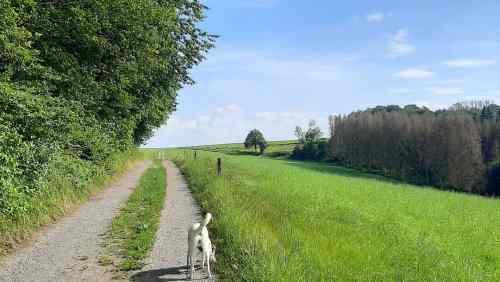 Wandern in Much Familienwanderweg