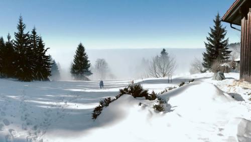 Winterwonderland im Kleinformat: das Gebiet um den Brotjacklriegel
