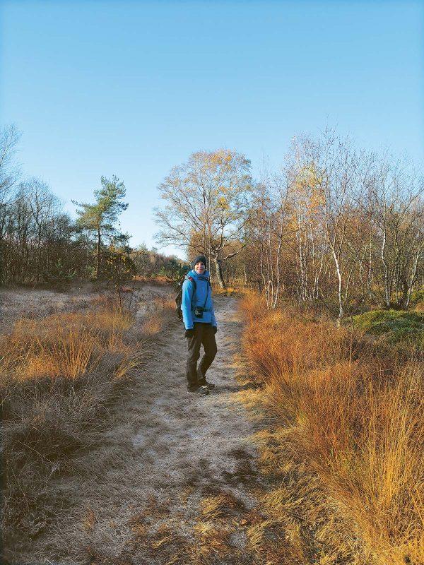Glitzernder Raureif hat sich auf Wege und Bäume in der Molberger Dose gelegt.