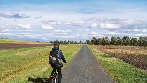 Vorbei an Feldern und Wiesen: Die 46km lange Tour zeigt die ländlichen Facetten des Harzvorlandes.